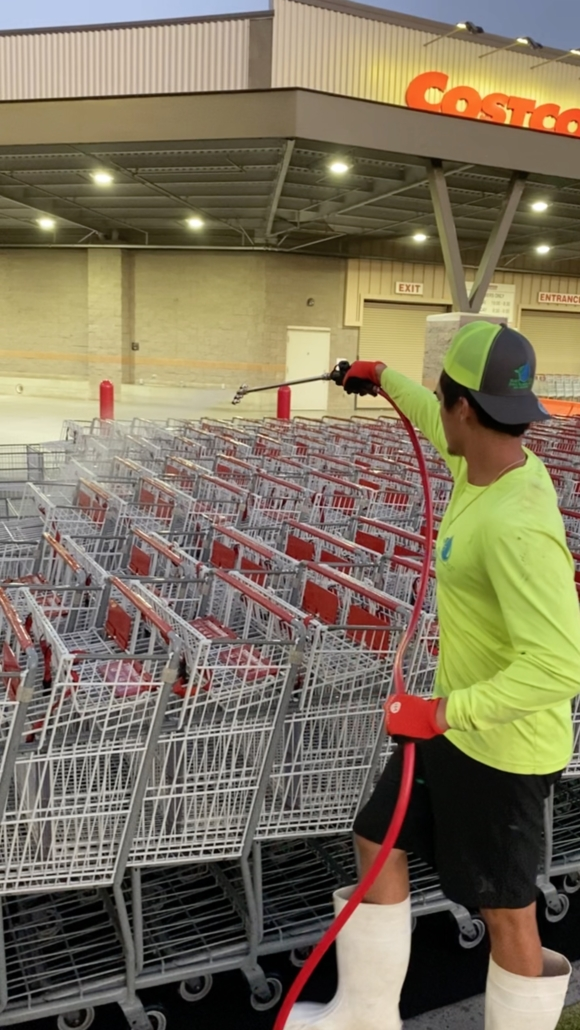 Costco Shopping Cart Santinizing